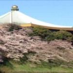 ゆっくり花見が出来る東京の穴場スポットはここ!デートにも最適!