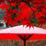 京都の紅葉2014!時期とおすすめの穴場スポットはココ!